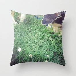 Mako meandering through mushrooms Throw Pillow