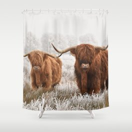 Hairy Scottish highlanders in a natural winter landscape. Shower Curtain