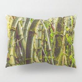 Bamboo Forest Pillow Sham