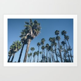 Another Perfect Day Art Print