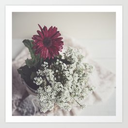 Soft Focus Red Daisy Art Print