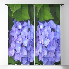 Blue Hydrangea Blackout Curtain