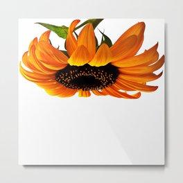 FLOWER 032 Metal Print