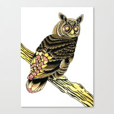 Owl Owl Owl Canvas Print