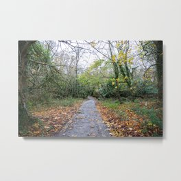 The Woods of Waterford Metal Print