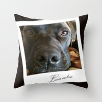 louis Throw Pillows featuring Louis online by Laake-Photos