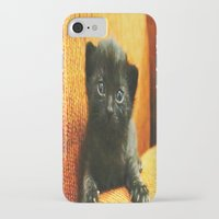 kitten iPhone & iPod Cases featuring kitten by Bar Morrison