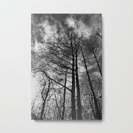 Fall Sentinels Metal Print