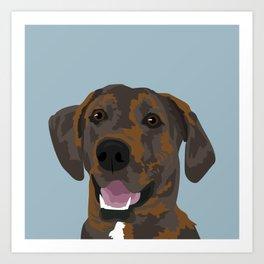 Cooper Brindle Dog Art Print