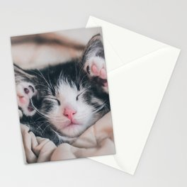Paws Up For Naptime! Stationery Cards