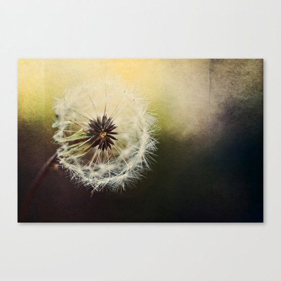 Grungy Wisher Canvas Print