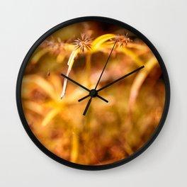 grass in the sun Wall Clock