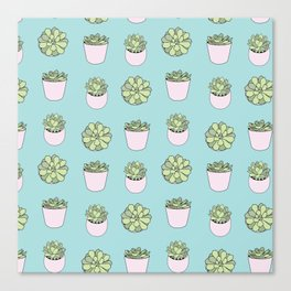 Green suculents in pink flowerpots on mint background Canvas Print