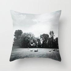 hay Throw Pillow