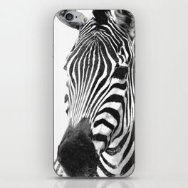 Black and white zebra illustration iPhone Skin