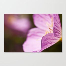 Summer Flower Canvas Print