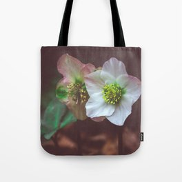 Out of the Gloom Tote Bag
