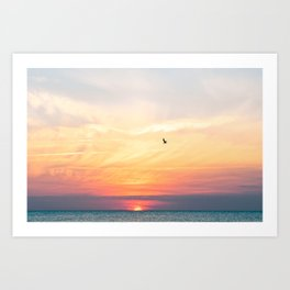 Let your dreams fly high Art Print