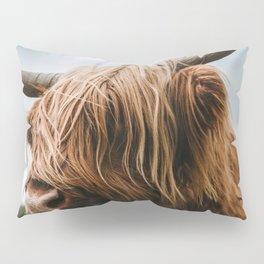Scottish Highland Cattle - Animal Photography Pillow Sham