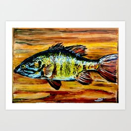 Fish Painting Art Print