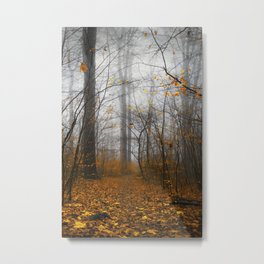 The Grey and the Yellow - Moody Forest in Fal Metal Print