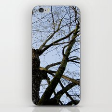 Youth Upon My Limbs I iPhone & iPod Skin