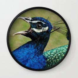 Peacock Mating Call Wall Clock