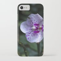 orchid iPhone & iPod Cases featuring Orchid by MVision Photography