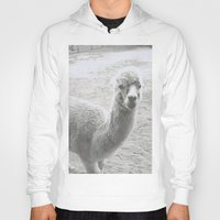 llama Hoodies featuring Llama by Cat In The Sorting Hat