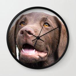 Chocolate Puppy Wall Clock