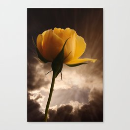 Good Morning World Canvas Print