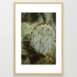 Desert Details Framed Art Print