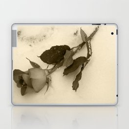 A lone rose resting in the snow Laptop & iPad Skin