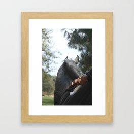 Dressage #8 Framed Art Print