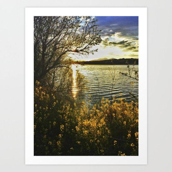 """Yellow flowers at sunset"" Art Print"
