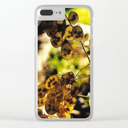 Money Plant in the Sunset Clear iPhone Case