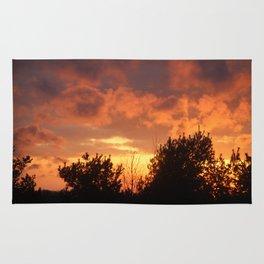 Sunsets of Summer Rug