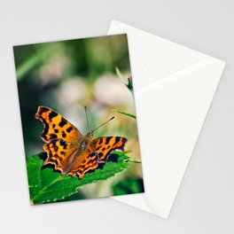 Comma Butterfly Stationery Cards