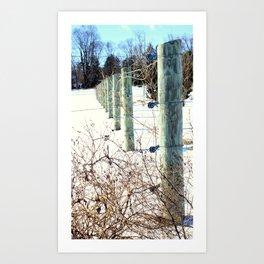 Winter Scene - Fence Posts Art Print