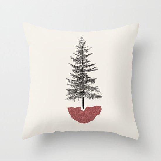 Fir Pine by monicaldasanz