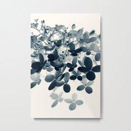 Cyan Hydrangea #1 Metal Print