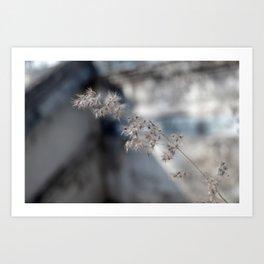 Temple Flower Art Print