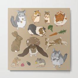 Small pets Metal Print