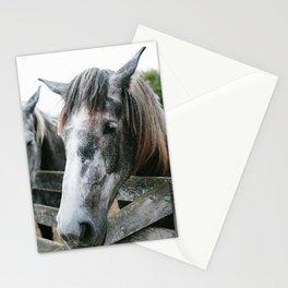 Horse II // Ohio Stationery Cards