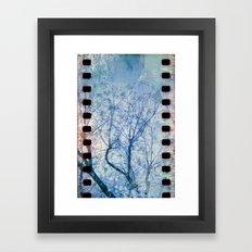 Blue Winter Blossoms  Framed Art Print