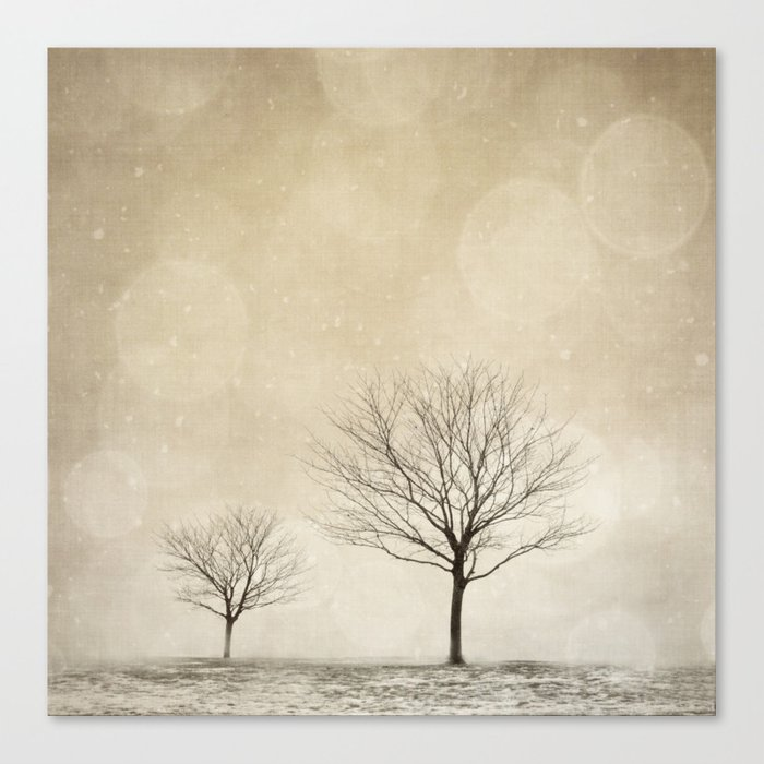 Snow Bokeh Wonderland  Canvas Print