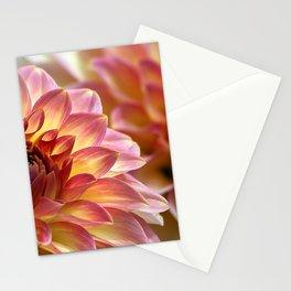 Pink dahlias Stationery Cards