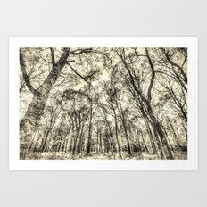 The Forest Of Sepia Art Print