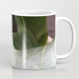 The invisible frog Coffee Mug