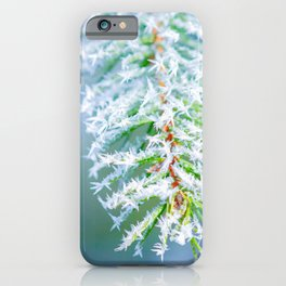 Bitter Cold, Frost On Spruce Tree iPhone Case